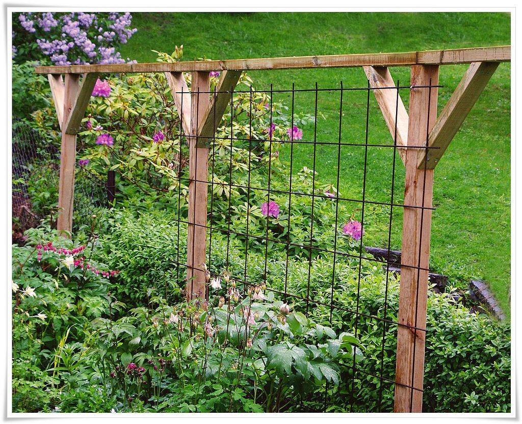 armeringsnät till trädgård