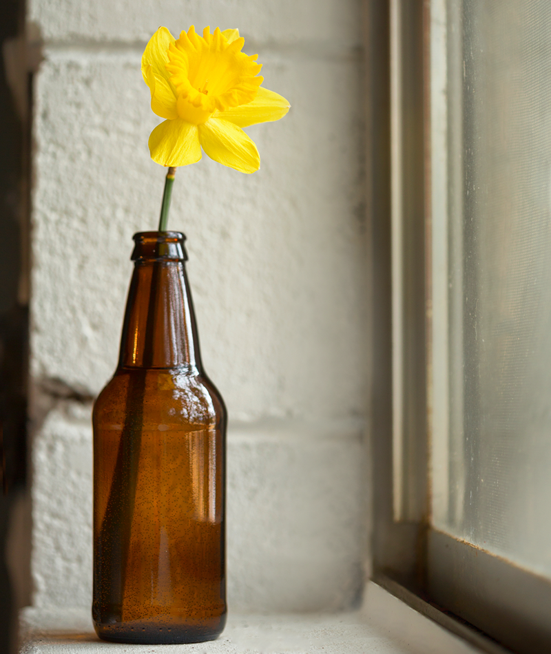 Vintage jar with a single cut bloom