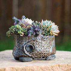 Nice arrangement and pot by Donna Davis Taylor