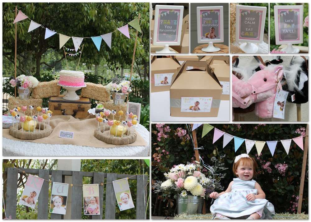 Vintage Girly Western Petting Zoo Birthday Party Ideas Zoo