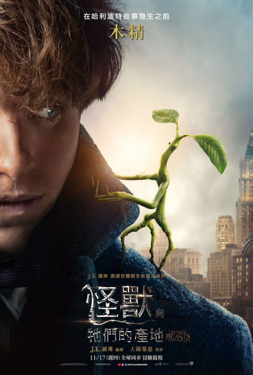 Fantastic Beasts And Where To Find Them(2016) Hd Wallpaper From  Gallsource