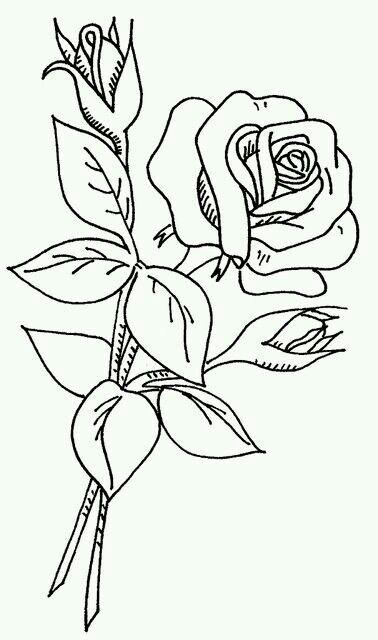 Nichisor Adli Kullanicinin Pag De Colorat Panosundaki Pin Boyama Sayfalari Nakis Desenleri Cizimler