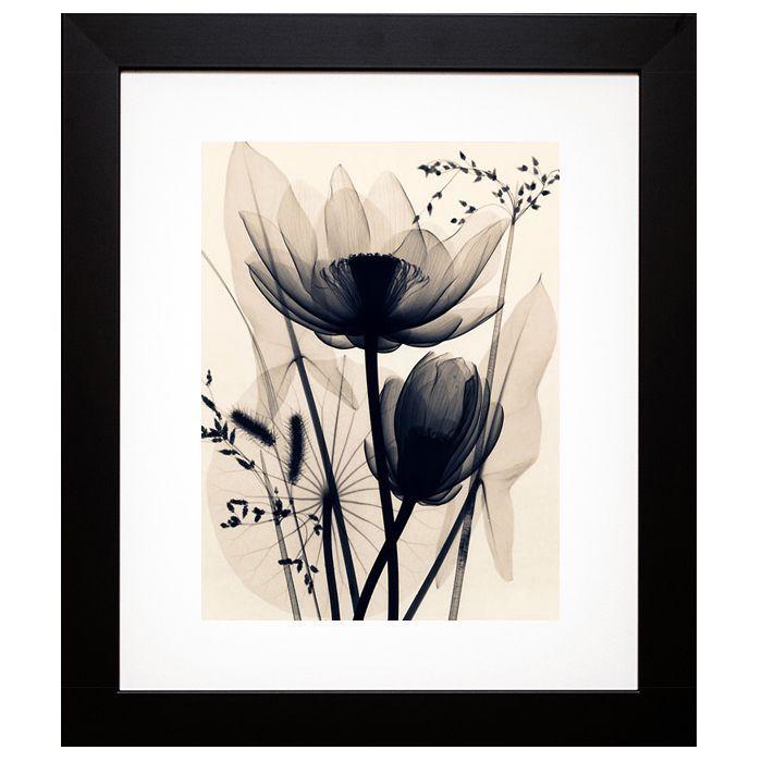 McMillan \'Lotus and Grasses\' Framed Artwork (21 X 24), Black