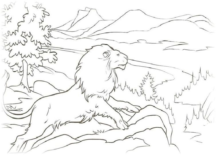 Ausmalbilder Fur Kinder Die Chroniken Von Narnia 13 Lowen Malvorlagen Narnia Malvorlagen Fur Kinder