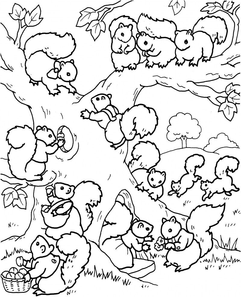squirrels day out | coloring | Pinterest | Ardilla, Dibujos de y ...