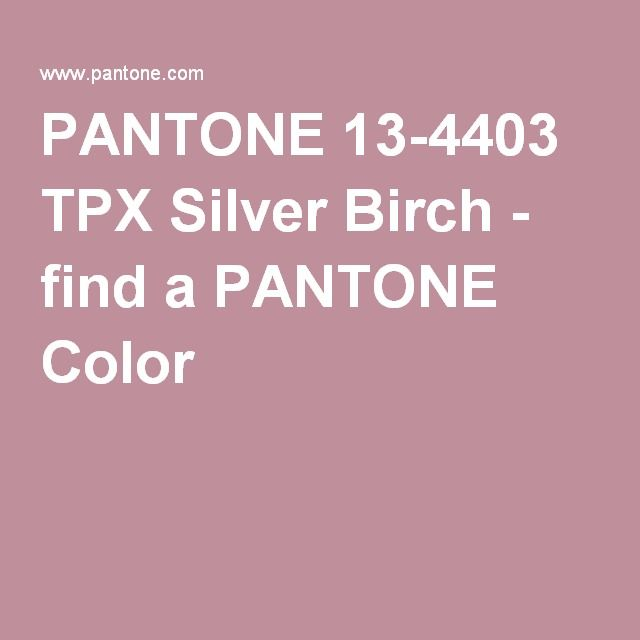 PANTONE 13-4403 TPX Silver Birch - find a PANTONE Color