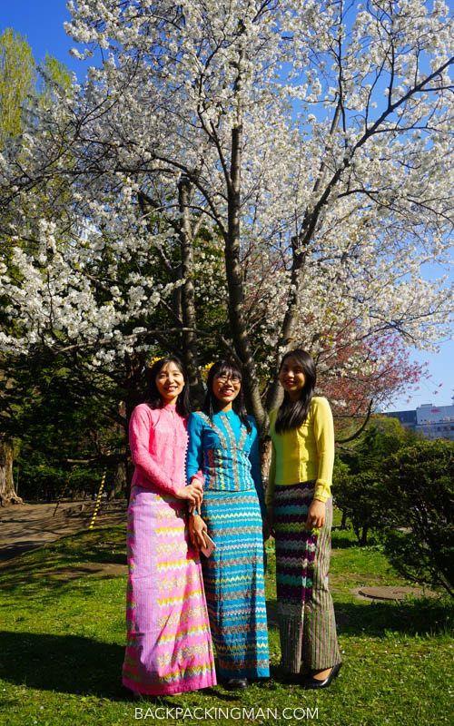 Cherry Blossom Sapporo Japan Backpackingman Japan Cherry Blossom Season Japan Travel