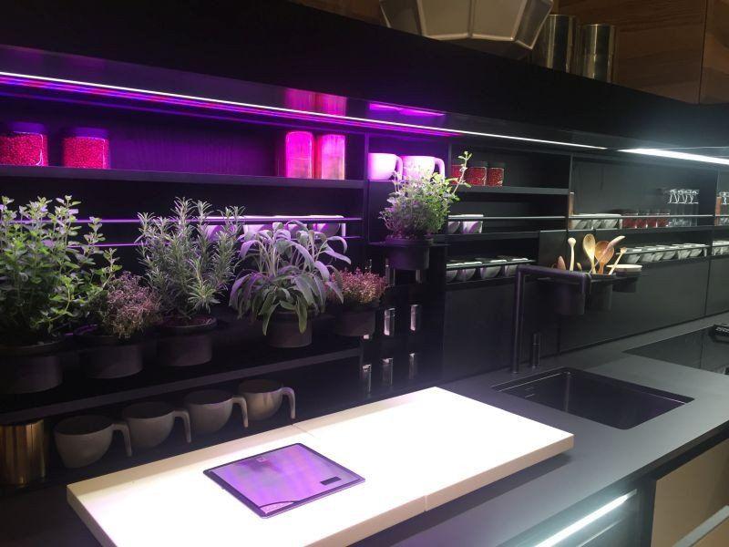 Purple And Black Kitchen Decor Lovely Under Cabinet Led Lighting Puts The Spotlight Kit