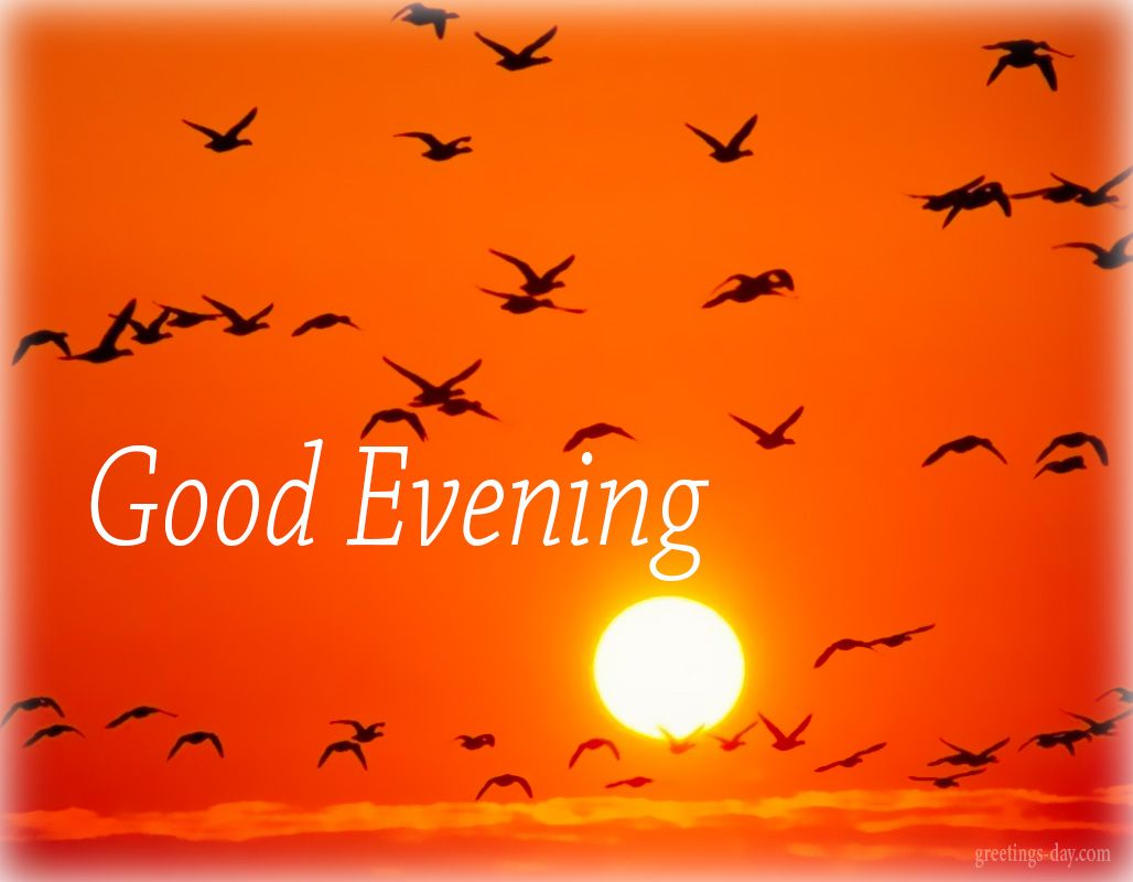 Good Evening Daily Gifs Pictures Messages Everydayecards