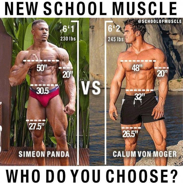 bulk up quickly with the best legal steroids, military grade muscle gainers, how to gain muscle