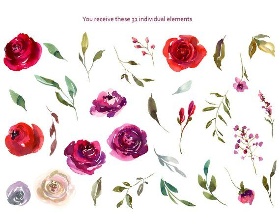 Watercolor Flowers Clipart Bright Roses Floral Ruby Red