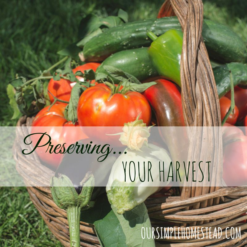 Preserving Your Harvest - You have spent months planning, planting, growing, watering, fertilizing and now your garden is producing baskets of fresh vegetables for you to enjoy. #gardening