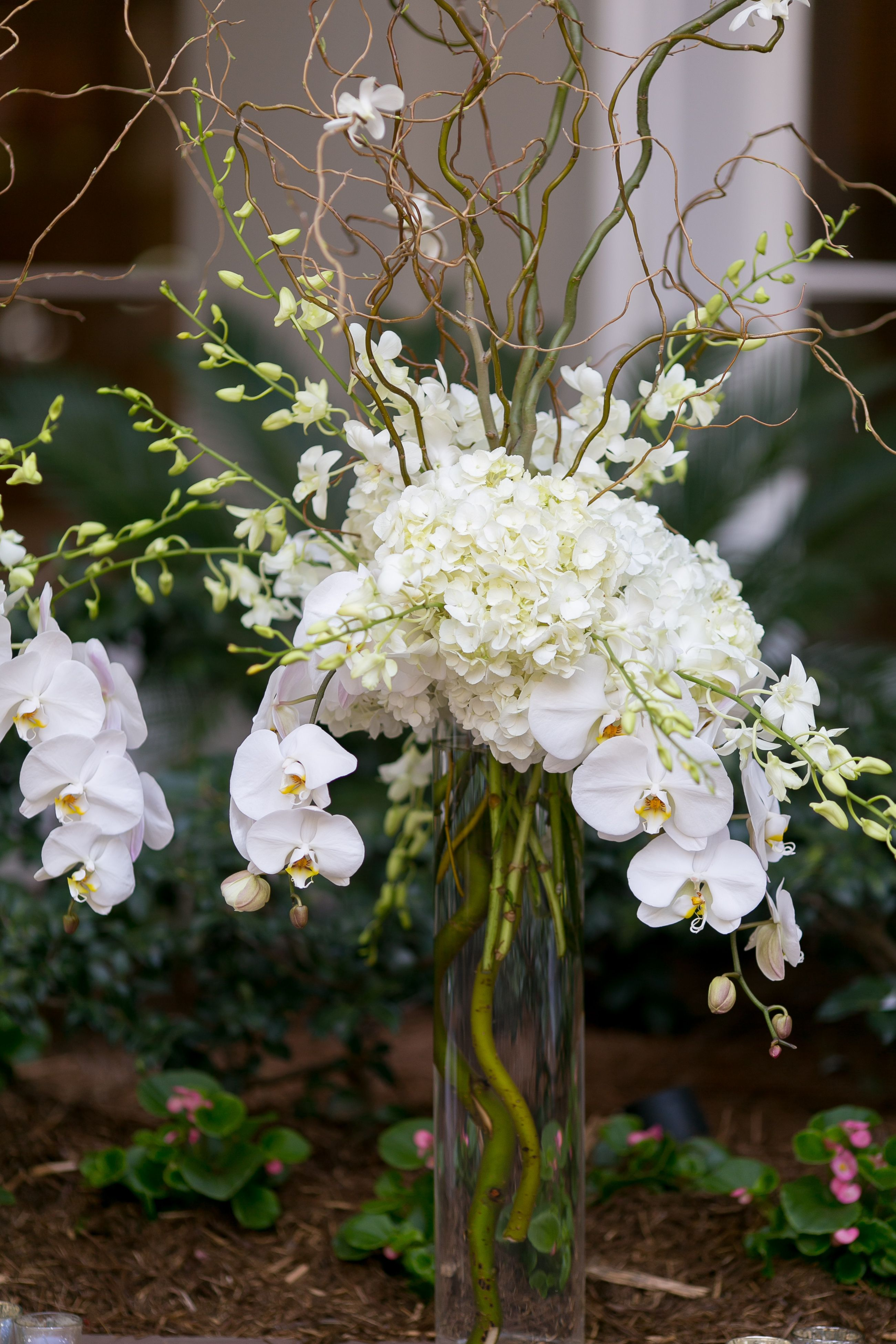 White hydrangea and cymbidium orchid centerpiece dream