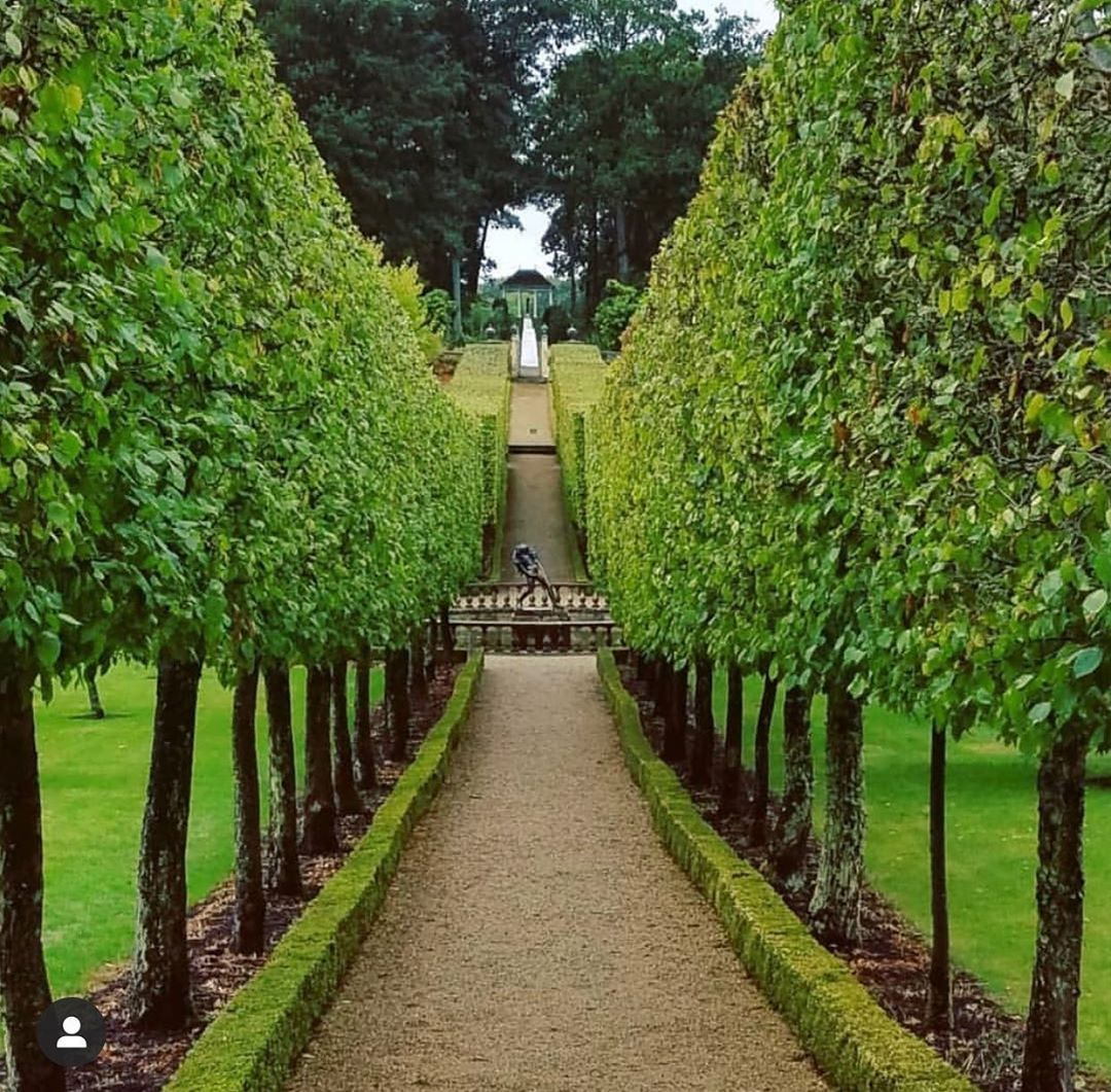 Danna Callahan On Instagram Buscot Park Located In Faringdon Oxfordshire England A Striking Allee Of Preac In 2020 Water Features Instagram Landscape