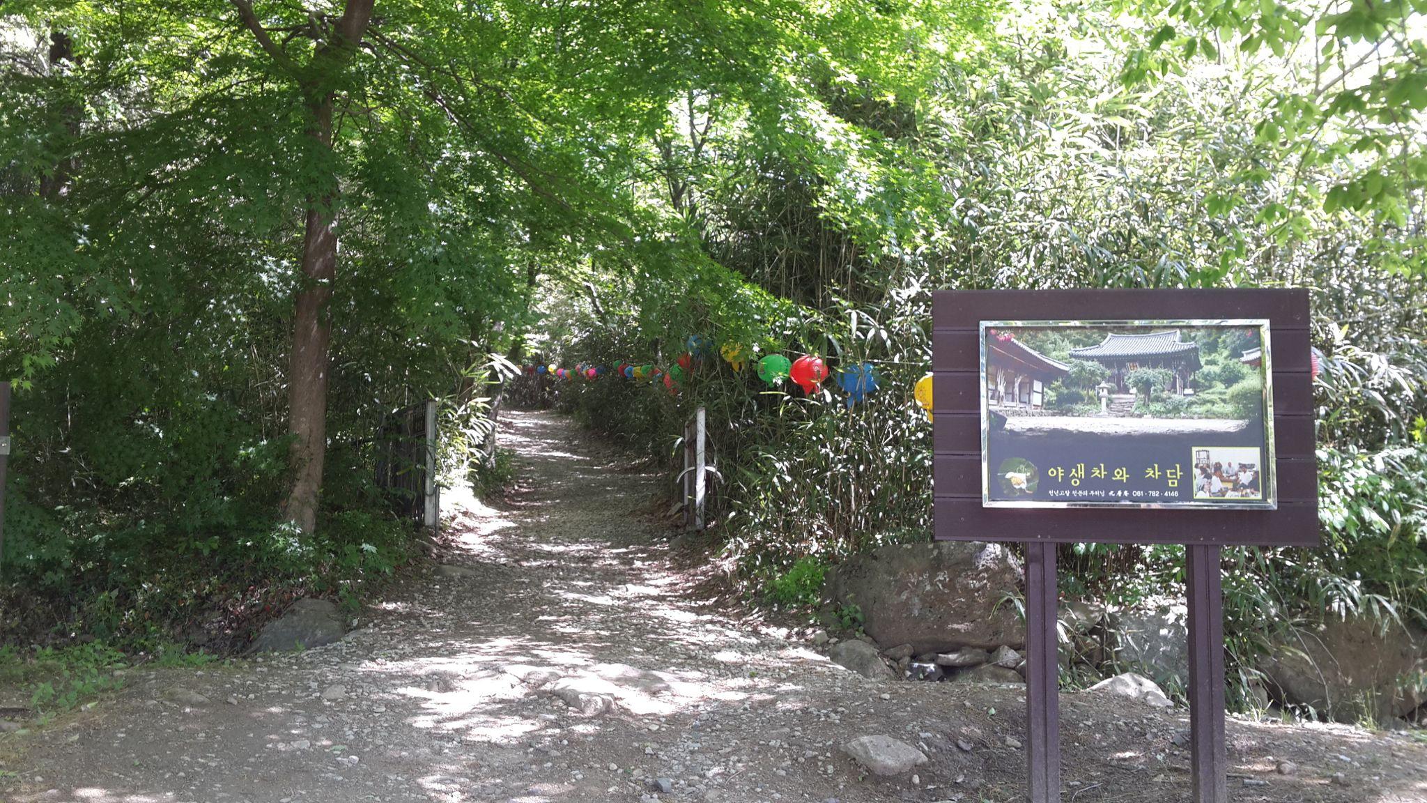 대나무 숲길.