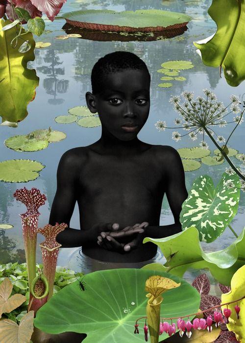 Malik dans le marais