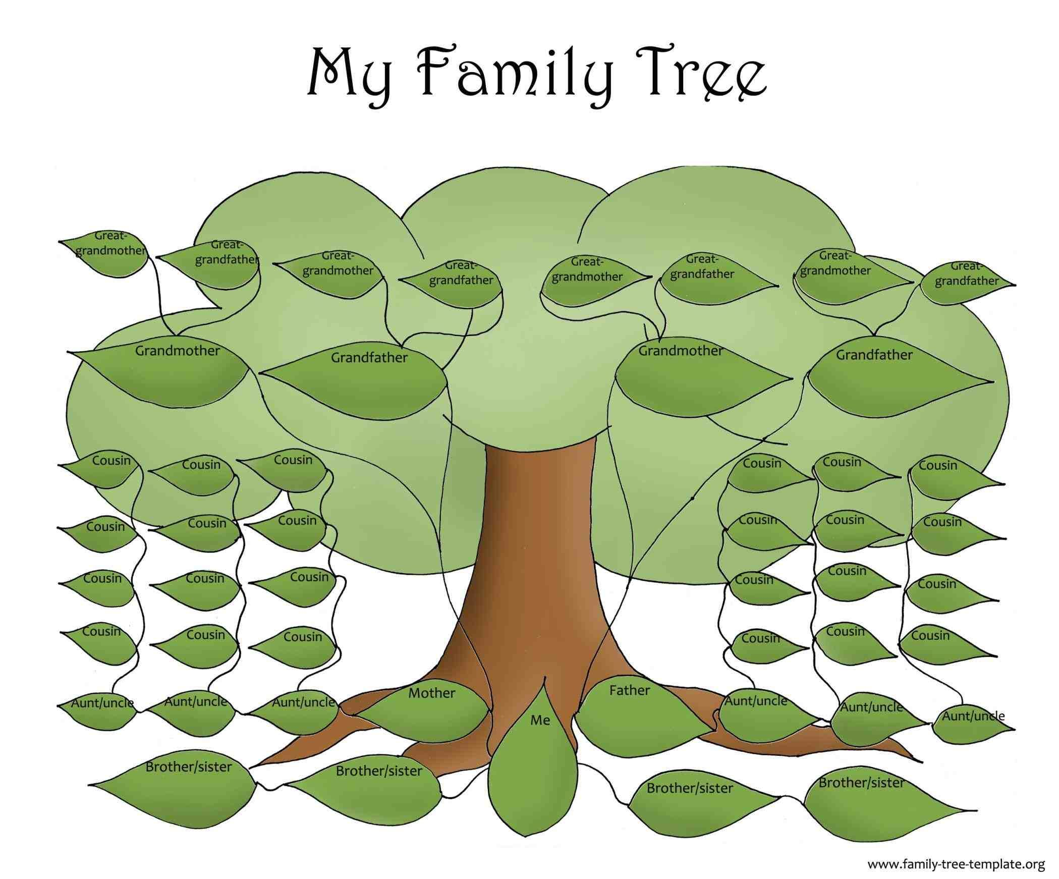 Family Tree Example For Kids  For My Little Girl