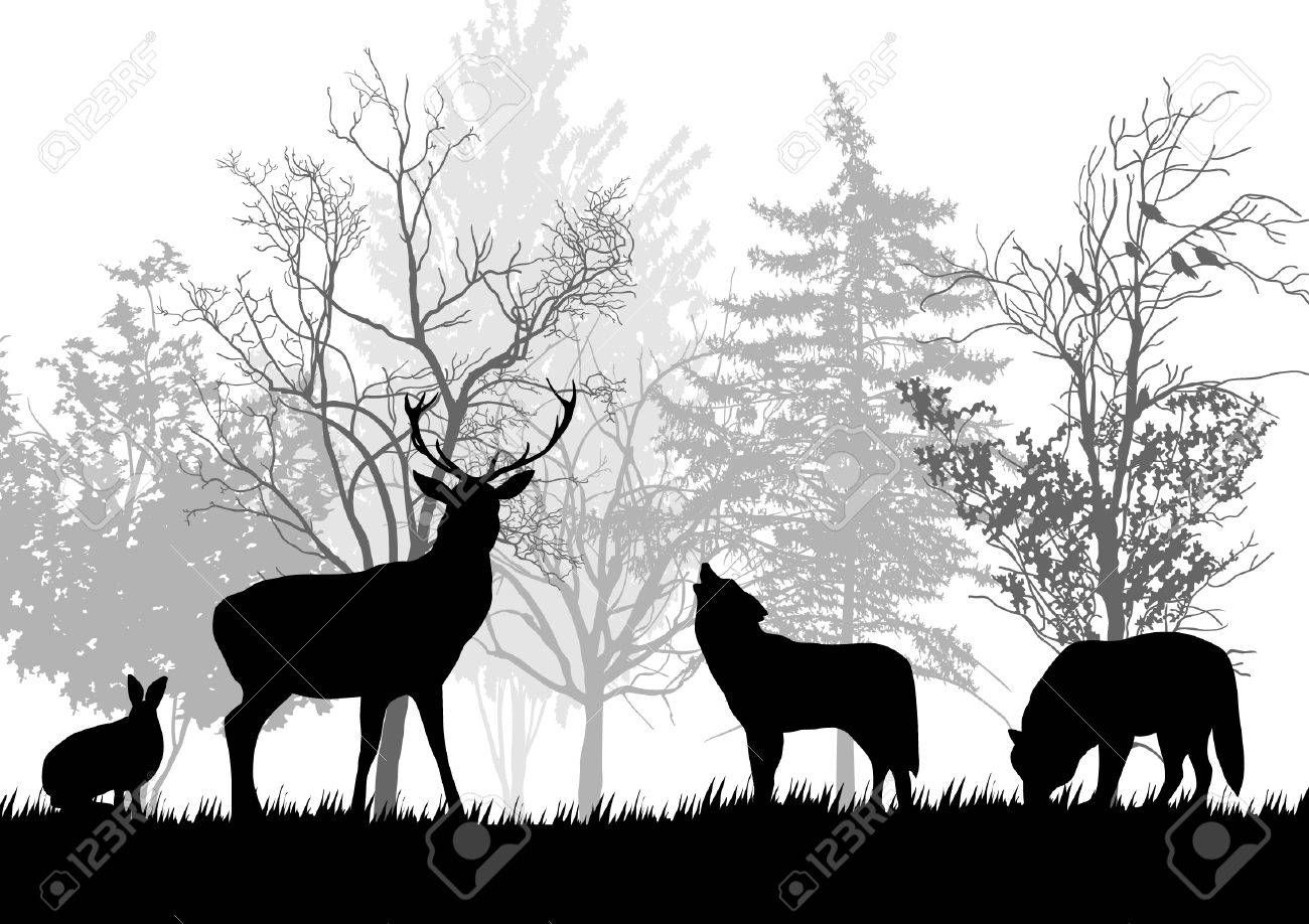 Stock Vector (With images) Forest silhouette, Animals