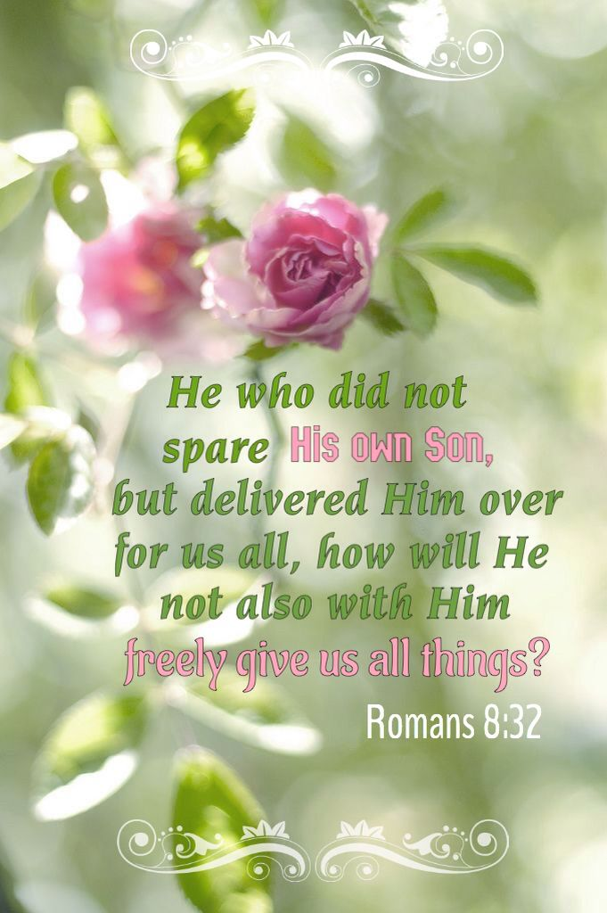 Romans 8:32 (KJV) He that spared not his own Son, but delivered him up for us all, how shall he not with him also  fre… | Bible words, Faith in god, Scripture verses