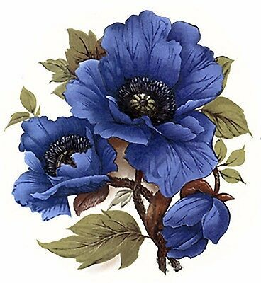 Blue Poppy Flower Select-A-Size Waterslide Ceramic Decals Bx