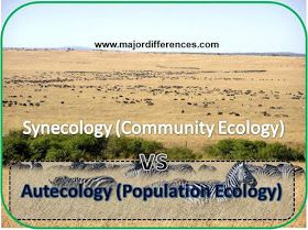 6 Differences between Autecology and Synecology. Explained with simple example