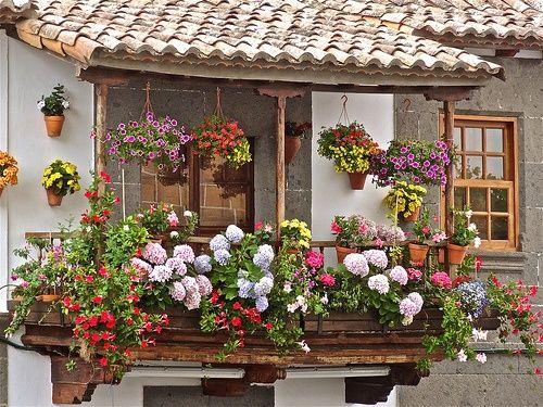 apartment / home balcony garden design
