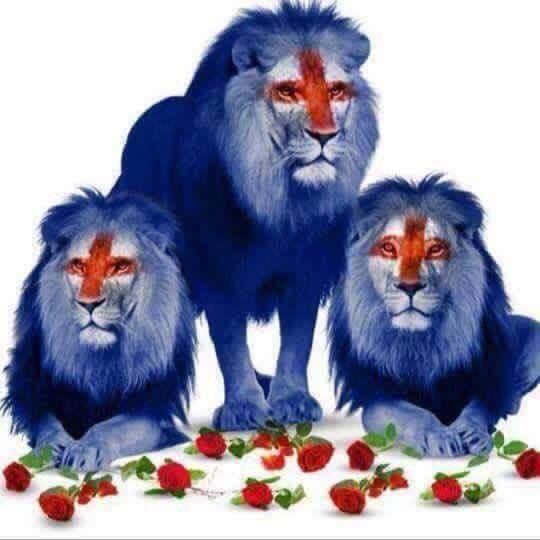 Three Lions, nickname of England football team. | Dragons ...