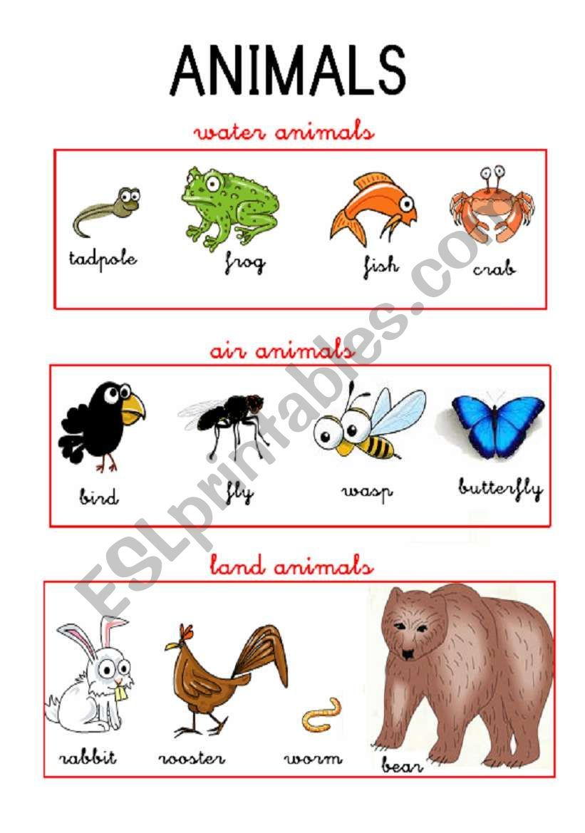 Animals Esl Worksheet By Anasotop Animal Worksheets Preschool Arts And Crafts English Lessons For Kids