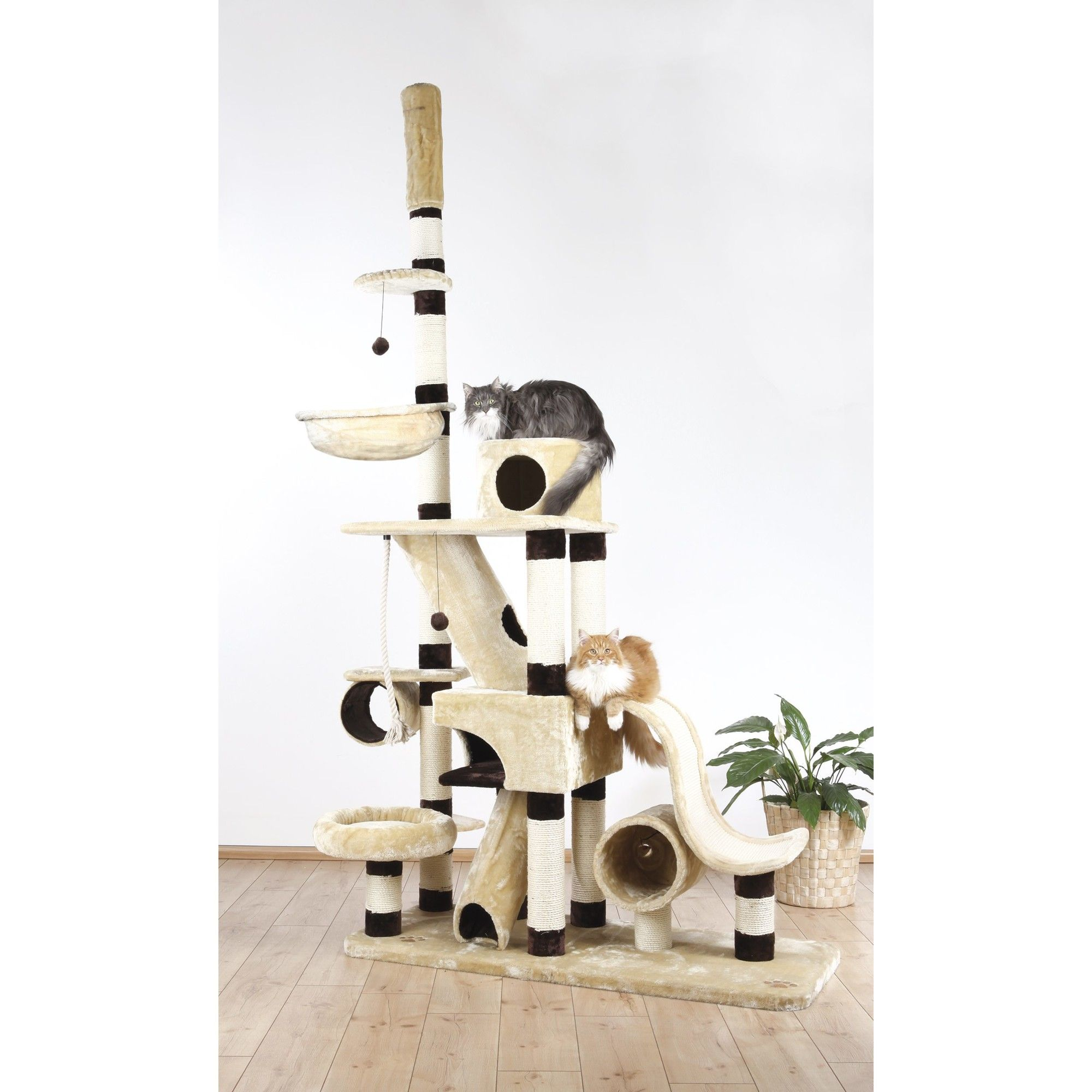 "110"" Munera Adjustable Cat Tree | Wayfair | Custom cat ..."
