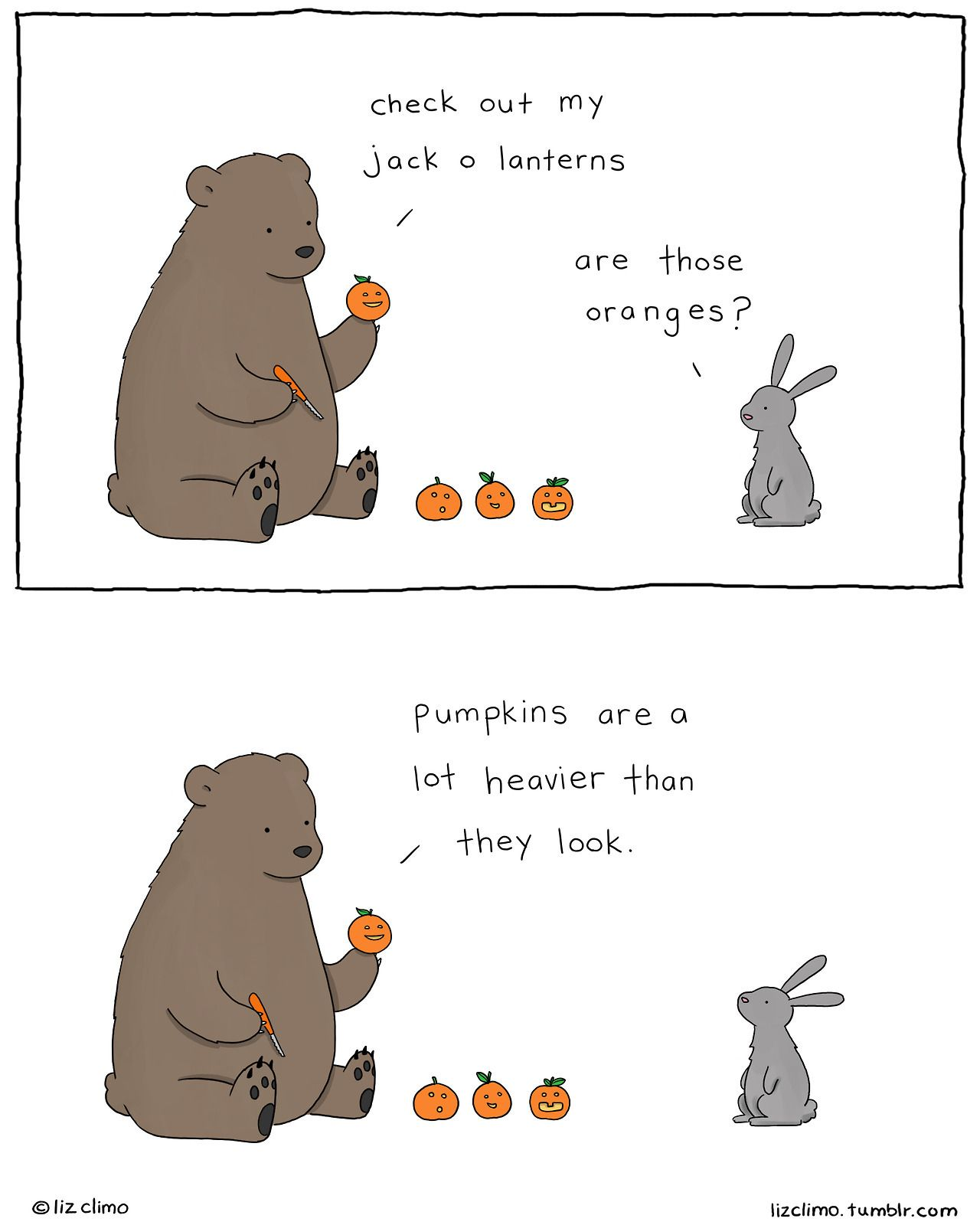 Image result for liz climo