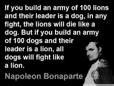 Terrierman's Daily Dose: The Leadership of Lions and Dogs