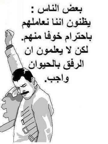 Pin By Ahmed El Danon On بالعربي Sarcastic Words Cool Words Funny Quotes
