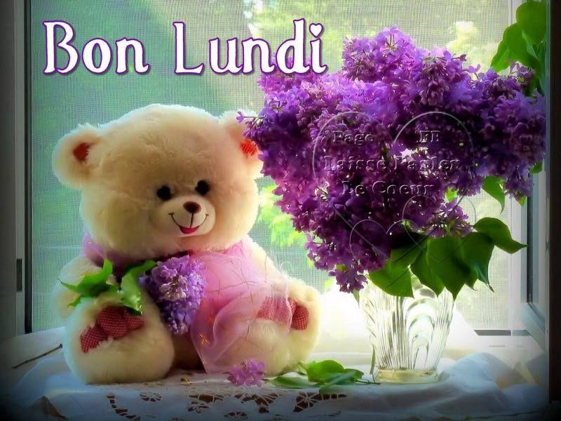 Bon Lundi #lundi | Bon mardi, Fond d'écran ours et Nounours