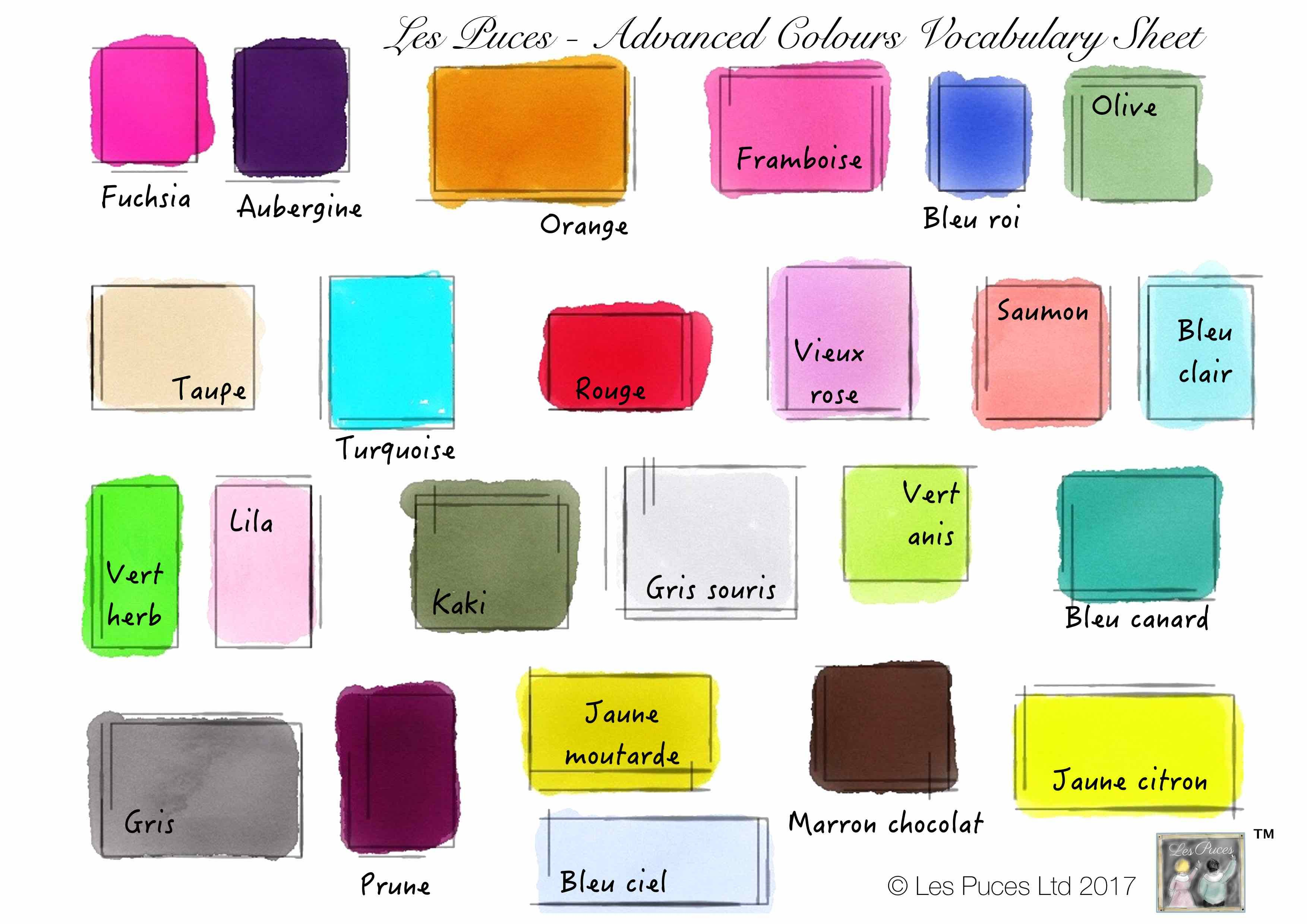 French English Advanced Colours Vocabulary Sheet Les Puces