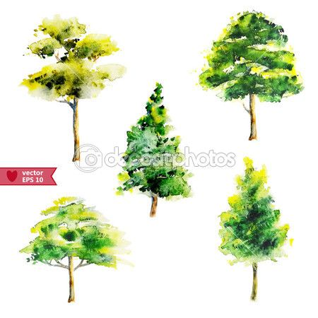 Dibujo de agua a mano un conjunto de vectores de árboles de color