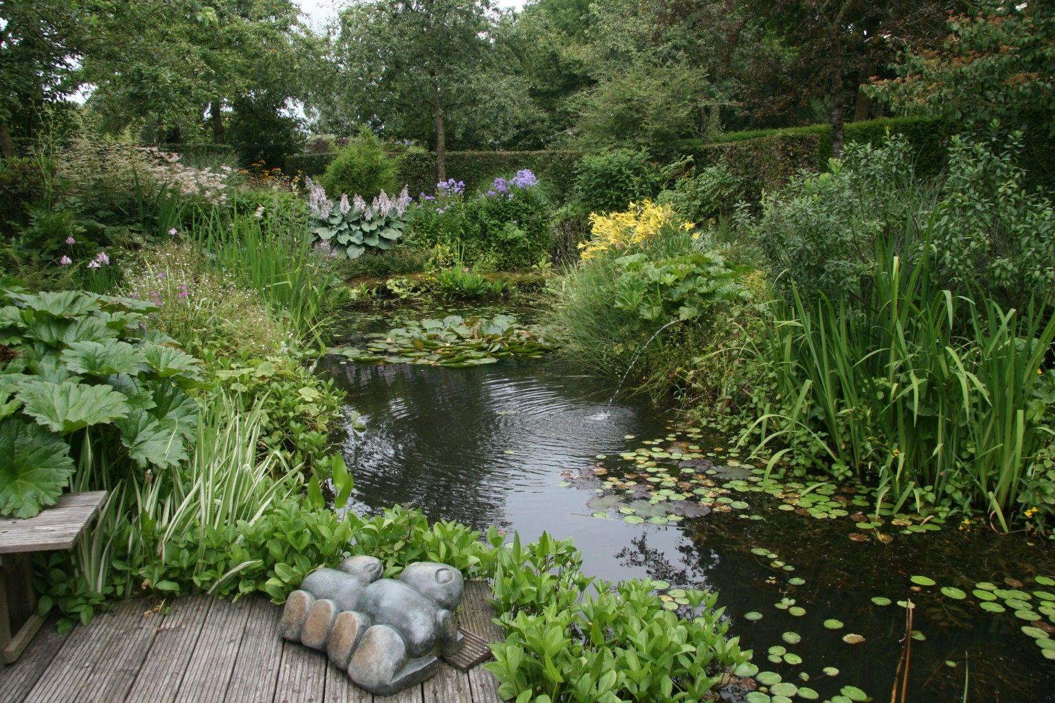 125 kleine natuurlijke vijver aanleggen vijvers snoeren for Natuurlijke vijver maken
