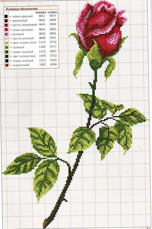 rosa en capullo | Mariposas y flores en punto de cruz | Pinterest ...