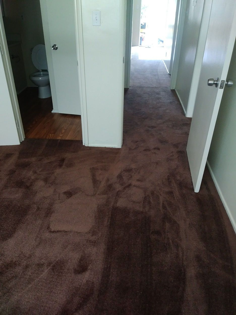 Order your carpet in sparrow color today we have this color in