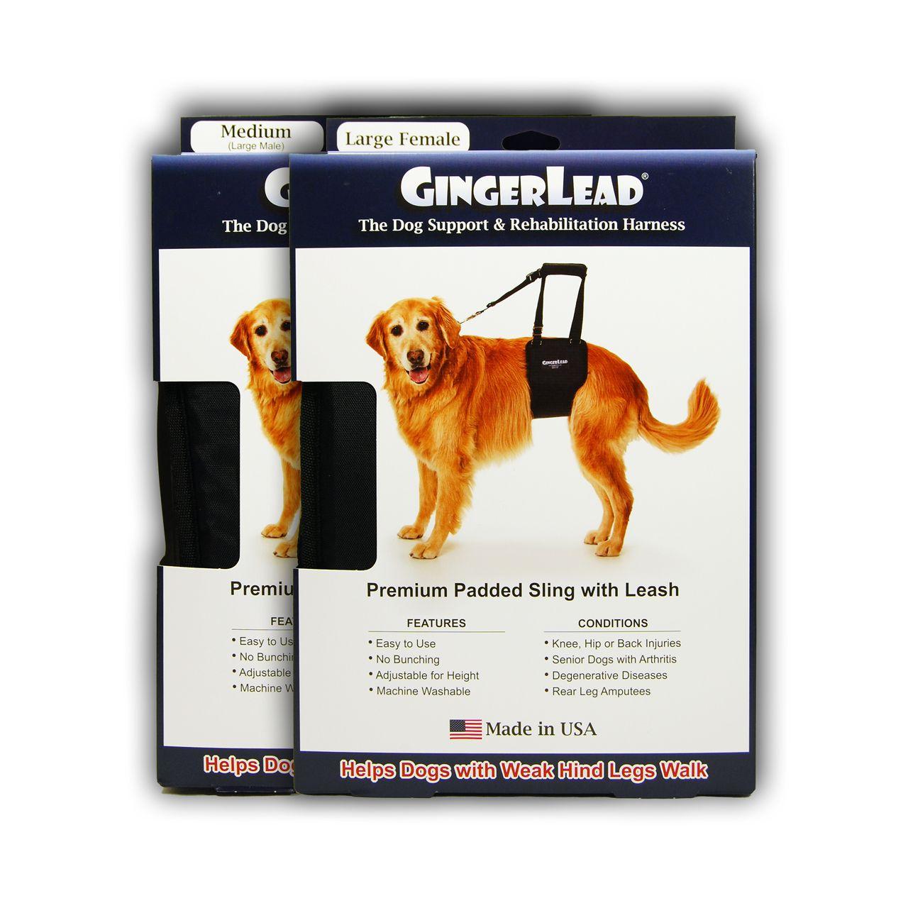 Doggonebig Com Gingerlead Large Support Sling Harness With