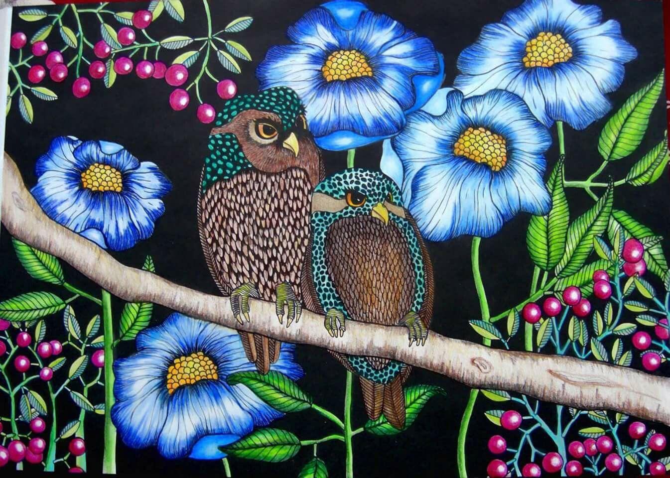 Pin Van Jose Wittenaar Op Vogels Bloemen Vogels Bloemen