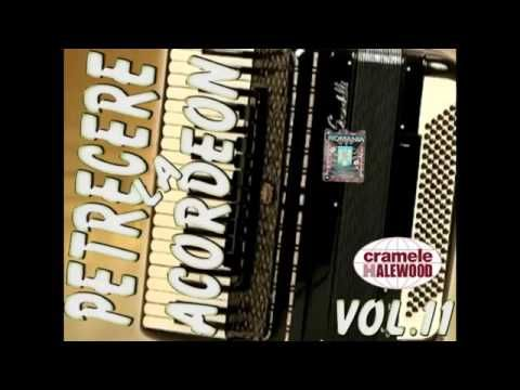Descarca Sarbe Si Hore 2019 Muzica De Petrecere Instrumentala