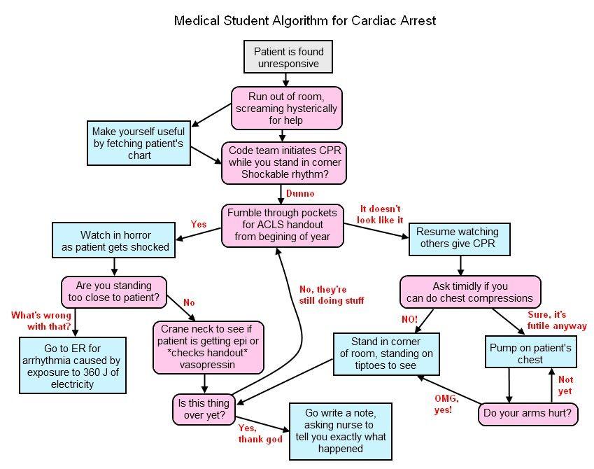 Acl For Resident Funny Algorithm Nursing School Prerequisites Pre Dissertation