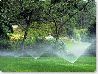Sprinkler Systems Repairs Installation Cape Coral Ft Myers Sprinkler Landscape Design Software Sprinkler System Installation