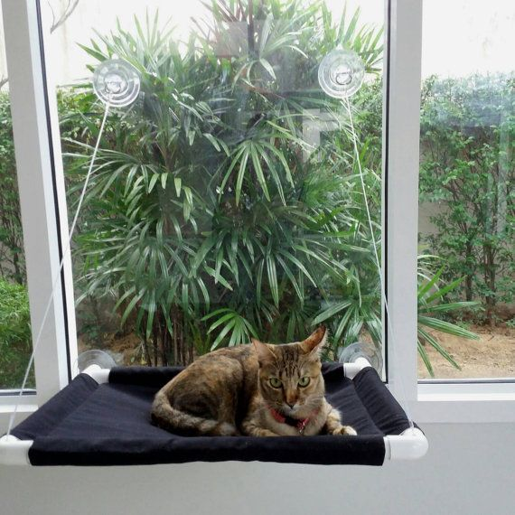 Hey, I found this really awesome Etsy listing at https://www.etsy.com/listing/248573792/window-cat-bed-cat-bed-cat-cot-cat