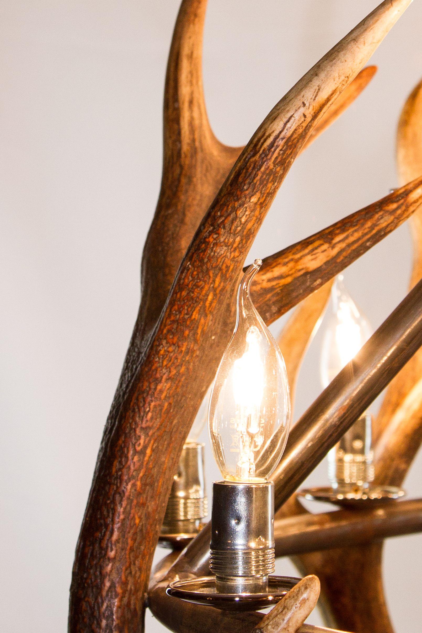 #light #lighting #handmadelights #lamps #verlichting #lampen #woodenlamps #hertengewei #hout #drijfhout #vakmanschap #craftsmanship #lutciamarechal #lightdesign #interiordesign www.exclusieve-verlichting.eu