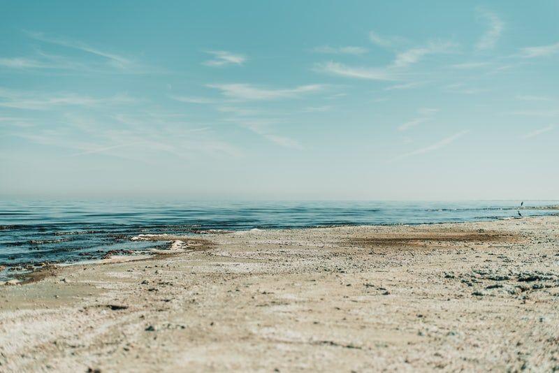 skyline photography of seashore   Morton Salt in 2019   Free