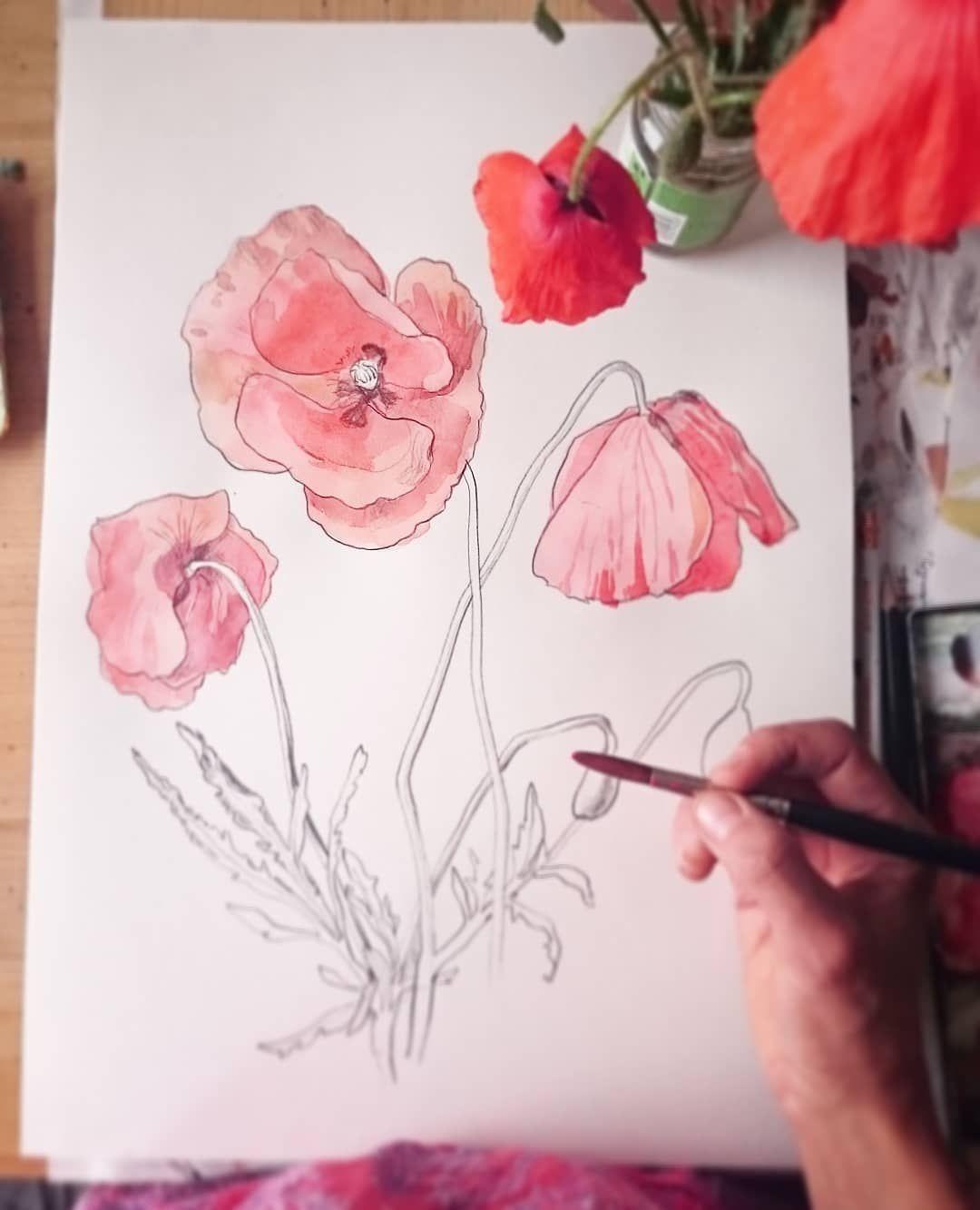 P O P P Y Blumen Malen Aquarellmalerei Mohnblume