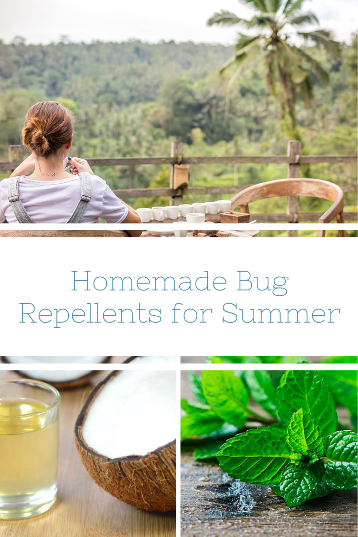 Homemade Bug Repellents to Keep Summer BugFree Homemade