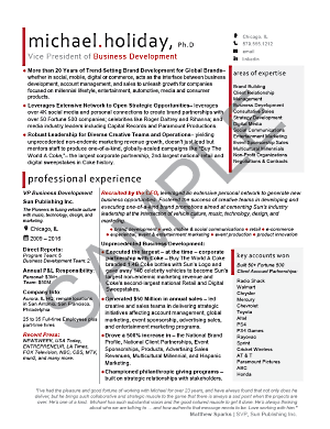 Executive Resume Sample Vp  Business Development Executive
