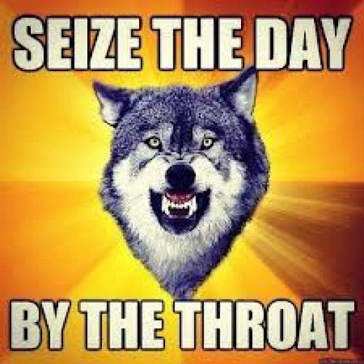 courage wolf meme #popularquotes #popular #quotes #intj ...